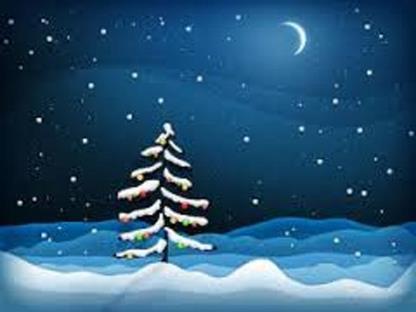 Stille natt - bildet av et grantre med snø en stjerneklar natt med nymåne